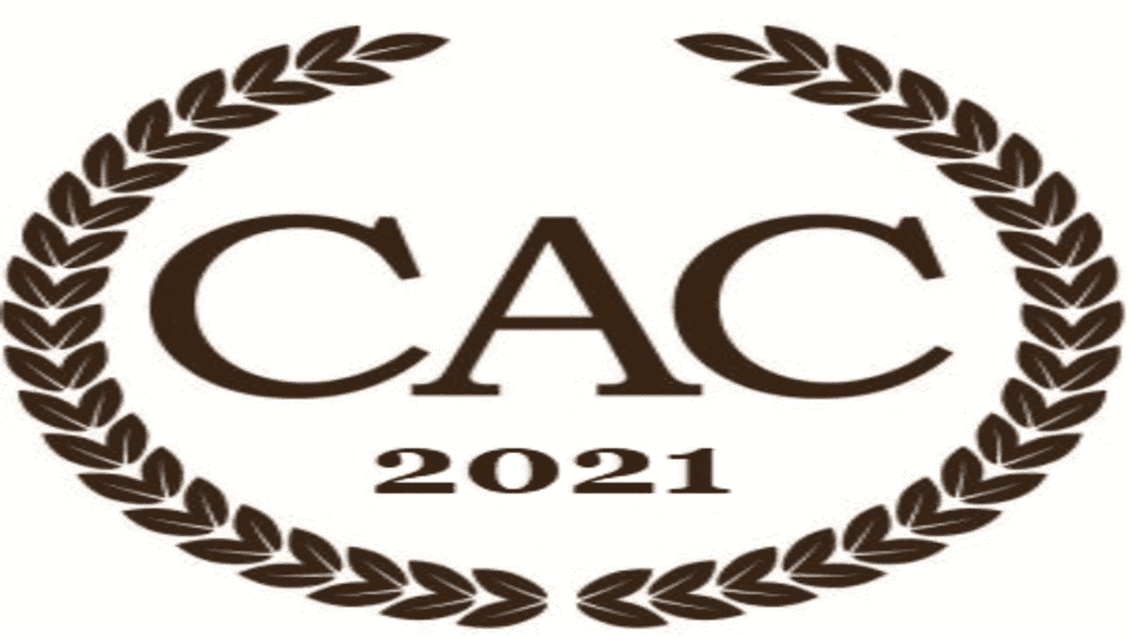 The 2020 I & I Book Awards for Instruction and Insight – the Semi-Finalists for the I & I Division of the 2020 CIBAs
