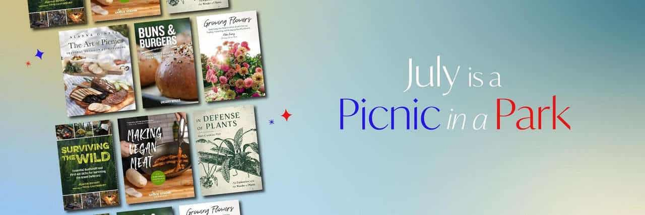 July is a Picnic in the Park Banner