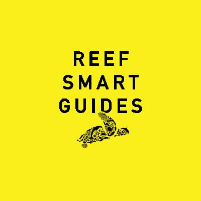 Reef Smart Guides Logo